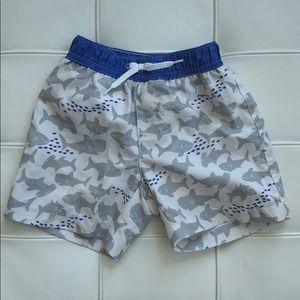 Gymboree Shark Swim Shorts Size 6-12 months